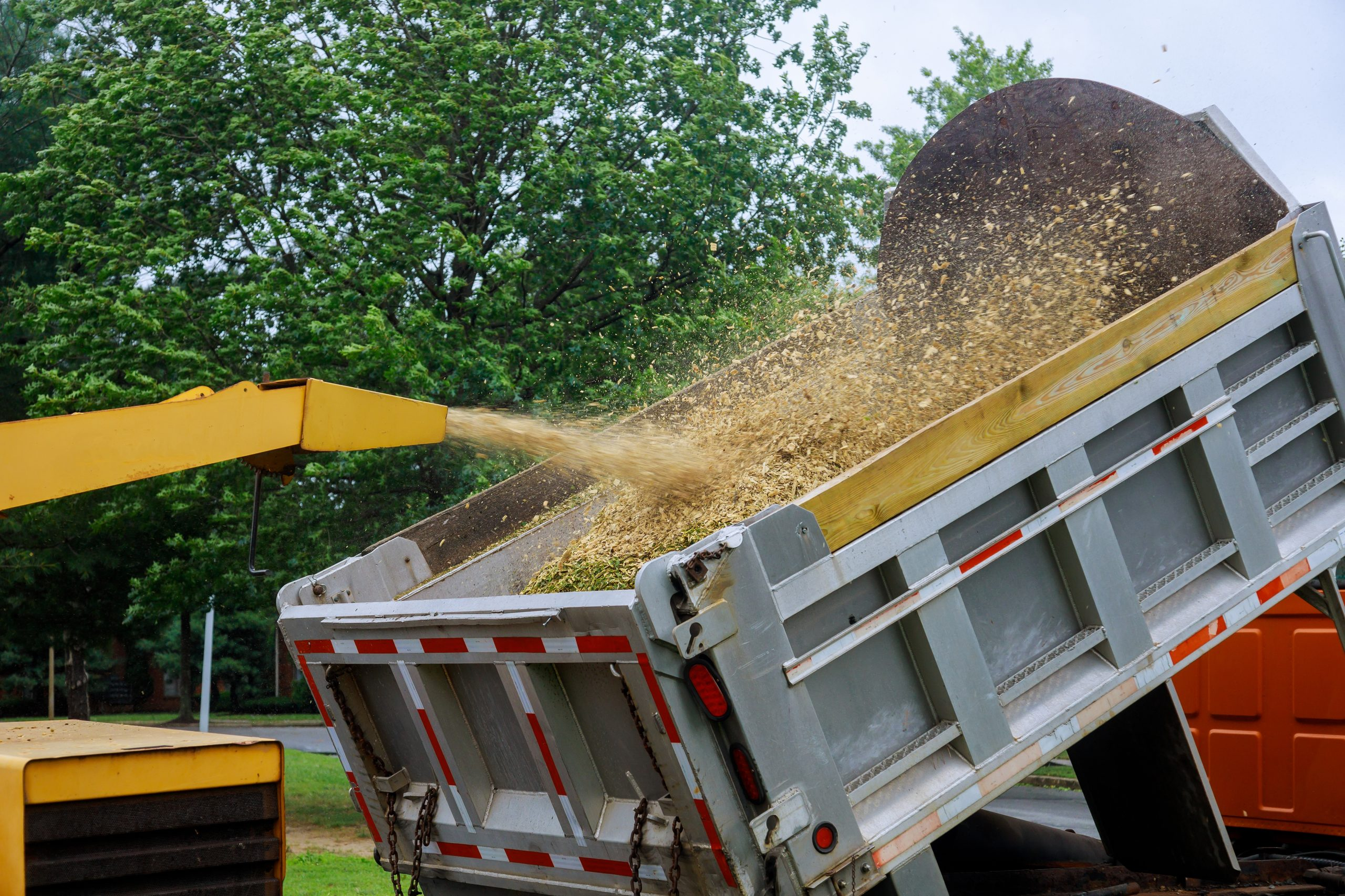 A wood chipper at work machinery, wood shredder placed in the intake chute for chipping after an unexpected hurricane storm